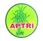 APTRI Ajukan Usulan HPP Gula Petani Tahun ini Sebesar Rp. 12.000